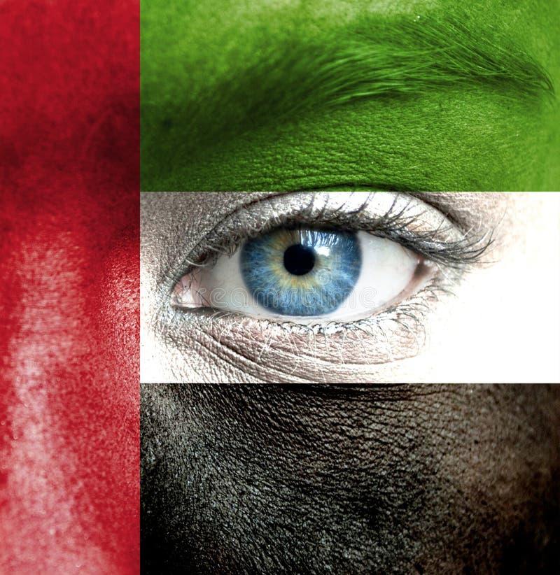 Rosto humano pintado com a bandeira de Emiratos Árabes Unidos fotos de stock