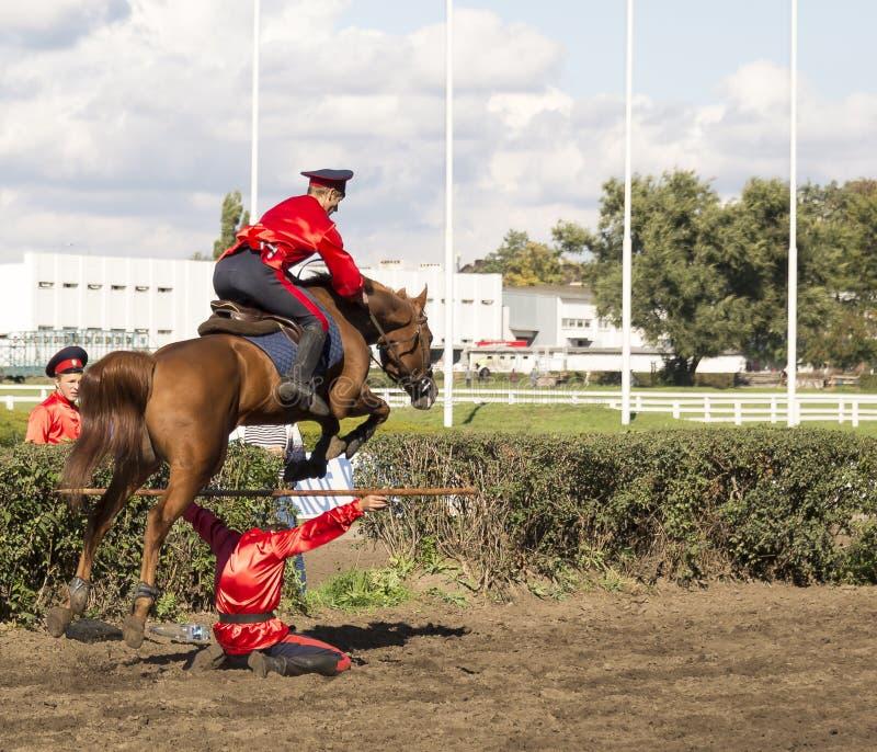 ROSTOV-ON-DON RUSSIA-SEPTEMBER 22 - härlig ryttare på en häst royaltyfria foton
