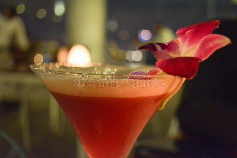 Rosy Cocktail arkivfoto
