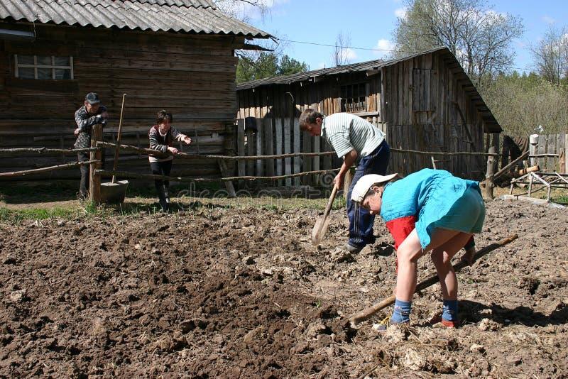 Rosyjscy dzieci pracują w ogródzie pod nadzorem dorosły obraz stock