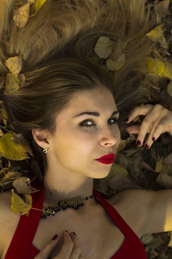 Rosyjska dziewczyna pozuje na tle lasy i natura w jesieni Parkujemy wakacje, rewolucjonistki suknia, pasja, erotyka, opinia, uczu fotografia royalty free