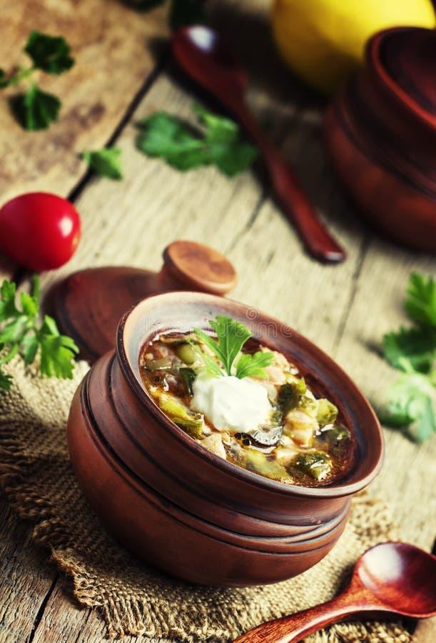 Rosyjska kuchnia: Solyanka - polewka od różnych rodzajów mięso fotografia royalty free