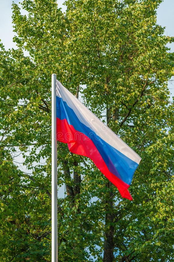 Rosyjska tricolor flaga przy flagpole w parku, obraz royalty free