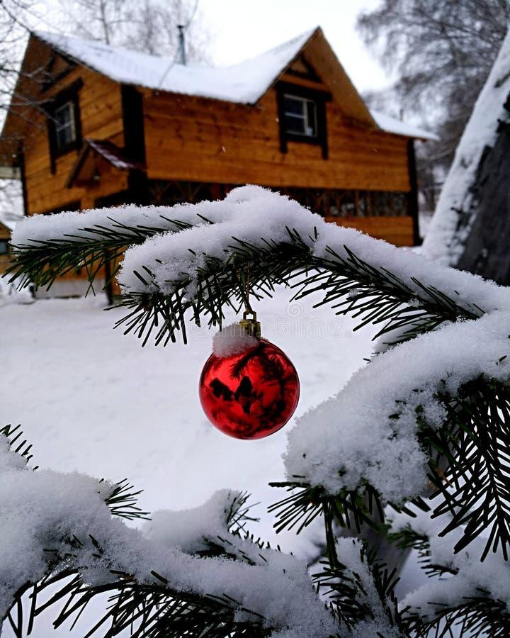 Rosyjska zima zdjęcia royalty free