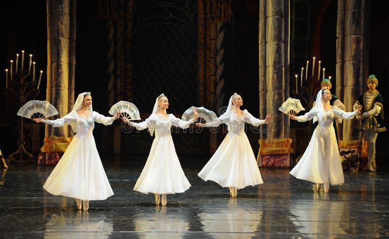 Rosyjski biel koronki sukni książe prętowego mitzvah baleta Łabędź trzeci jezioro zdjęcie royalty free