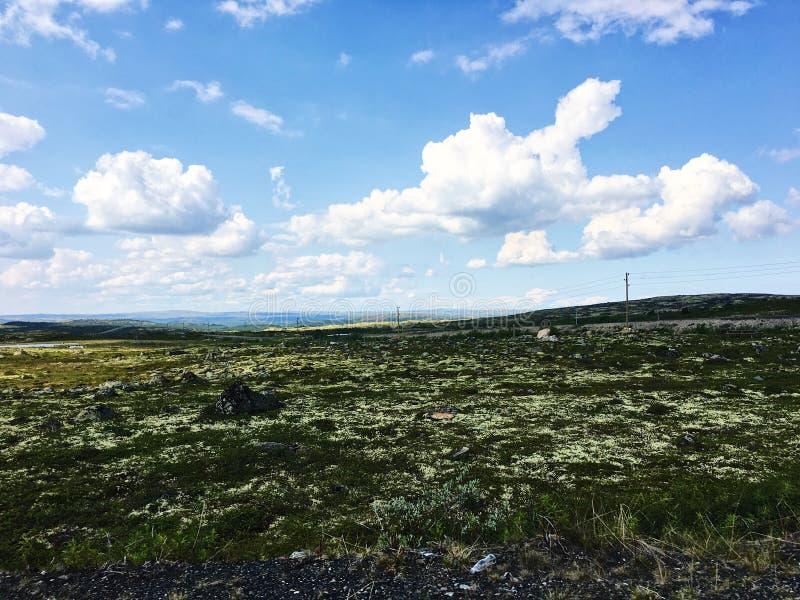 Rosyjski północ krajobraz zdjęcie royalty free