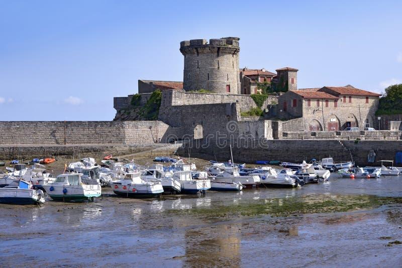 Roszuje przy Cibourre w Francja i port Socoa obraz stock
