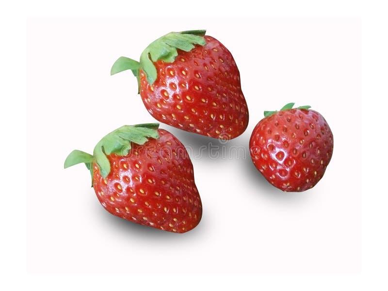 3 Rot-Erdbeere auf weißem Hintergrund stockfotos