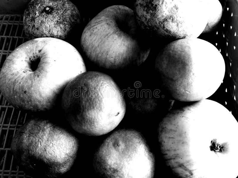 Rot fruit royalty-vrije stock afbeeldingen