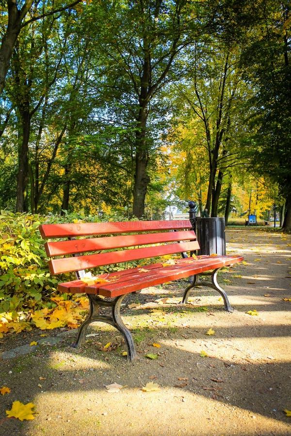 Rot, Holzbank im Park im Herbst lizenzfreie stockbilder