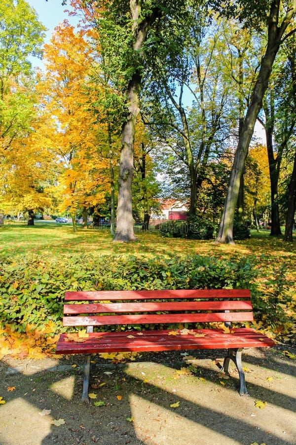 Rot, Holzbank im Park im Herbst stockfotos