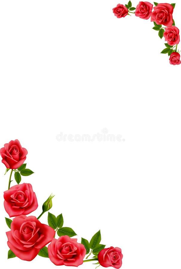 Rot stieg auf weißen Hintergrund lizenzfreie abbildung