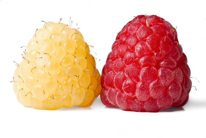 Rot und Goldhimbeeren lizenzfreies stockbild