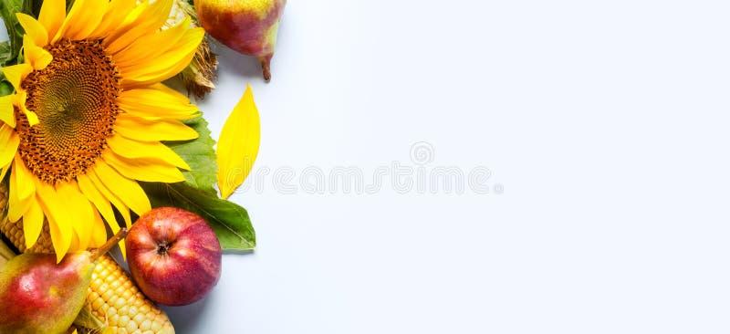Rot und Orange färbt Efeublattnahaufnahme Grenze der Sonnenblume, des Mais und der Birnen lizenzfreie stockbilder