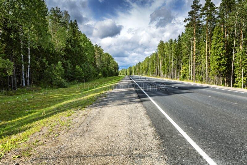 Rota da estrada direta através da superfície lisa do asfalto da floresta fotos de stock royalty free