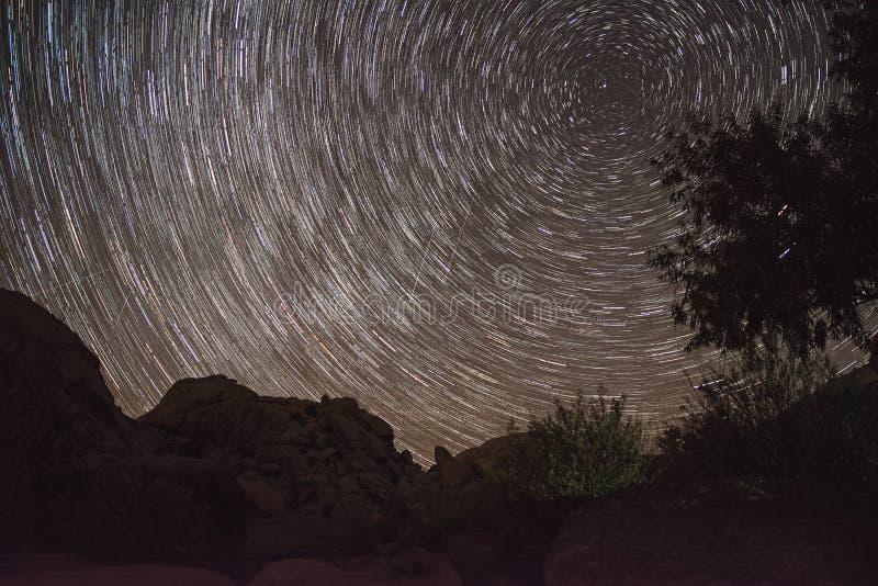 Rotation av stjärnorna - Josuha träd royaltyfria foton