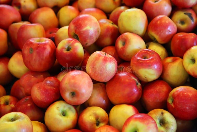 Rote Äpfel lizenzfreies stockfoto