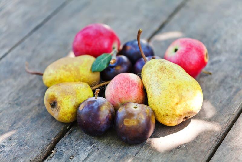 Rote Äpfel der natürlichen organischen Pflaumen der Fruchternte blauen färben Birnen auf Holztisch gelb Sonniges Sommertagesstill stockbilder
