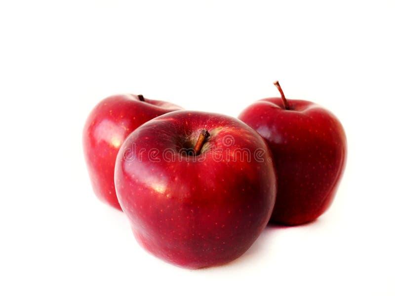 Rote Äpfel getrennt auf weißem Hintergrund lizenzfreie stockfotografie