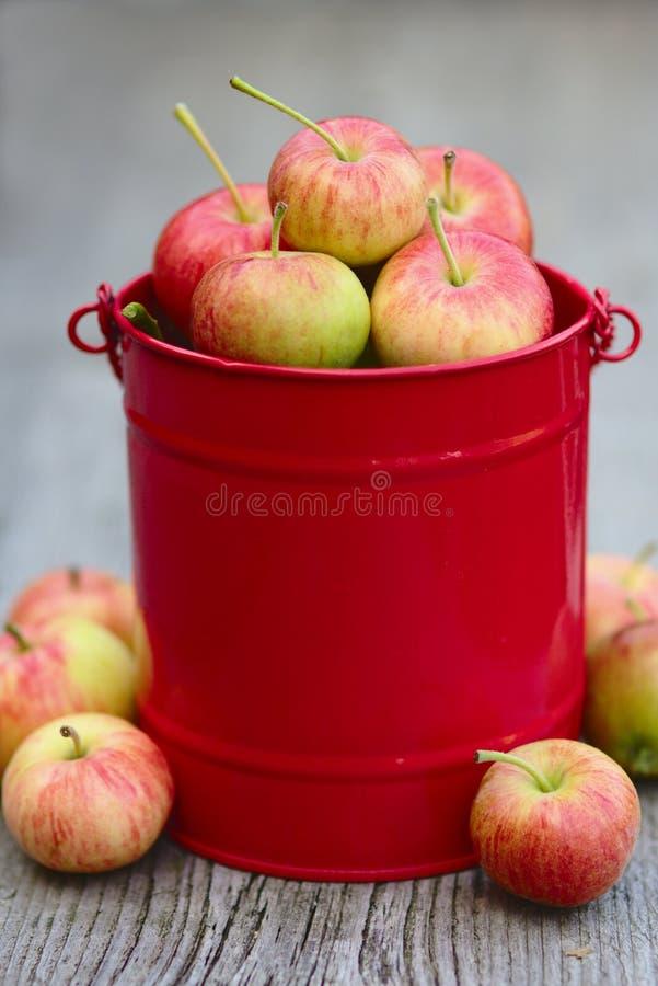 Rote Äpfel im Korb auf dem hölzernen Hintergrund stockbilder