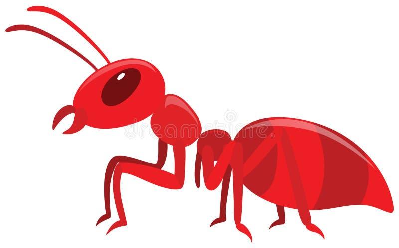 Rote Ameise auf weißem Hintergrund stock abbildung