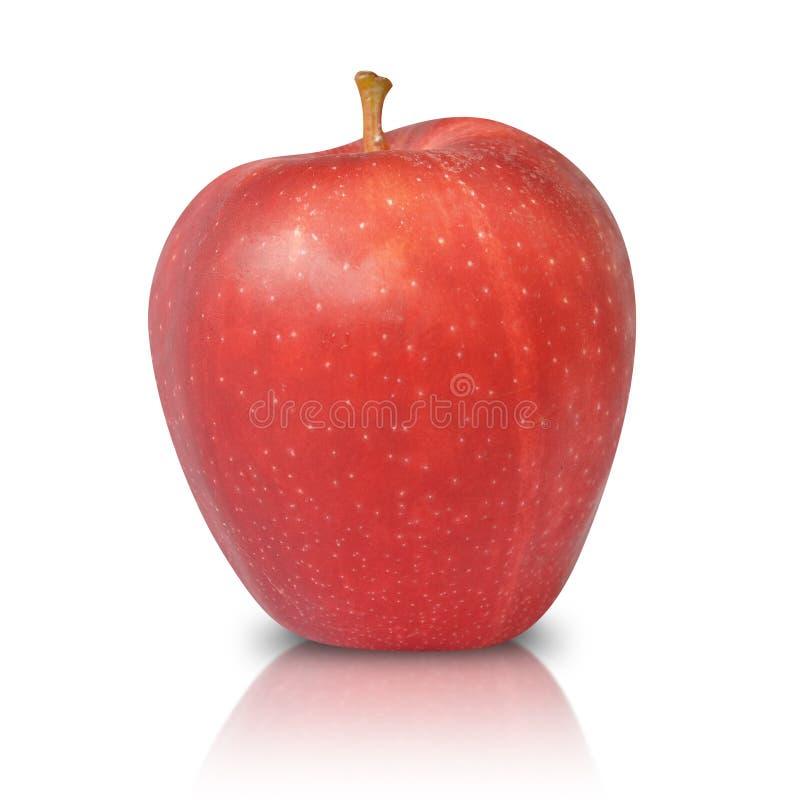 Rote Apple-Frucht trennte lizenzfreies stockbild