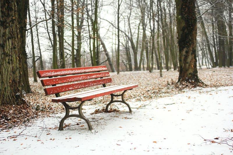 Rote Bank im Park bedeckt mit Schnee im Winter stockfoto