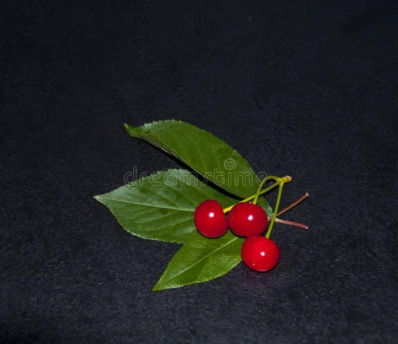 Rote Beeren auf dem dunklen Hintergrund stockfotos