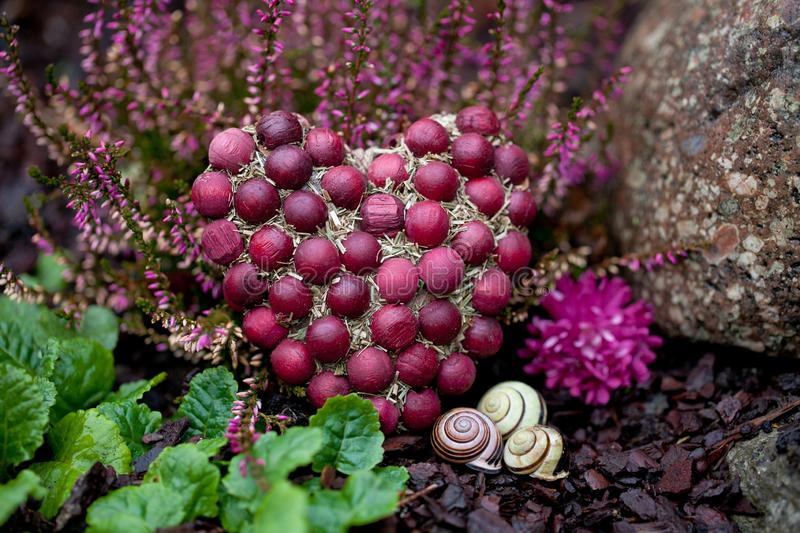 Rote Beeren Autumn Heart Still Life stockfotografie