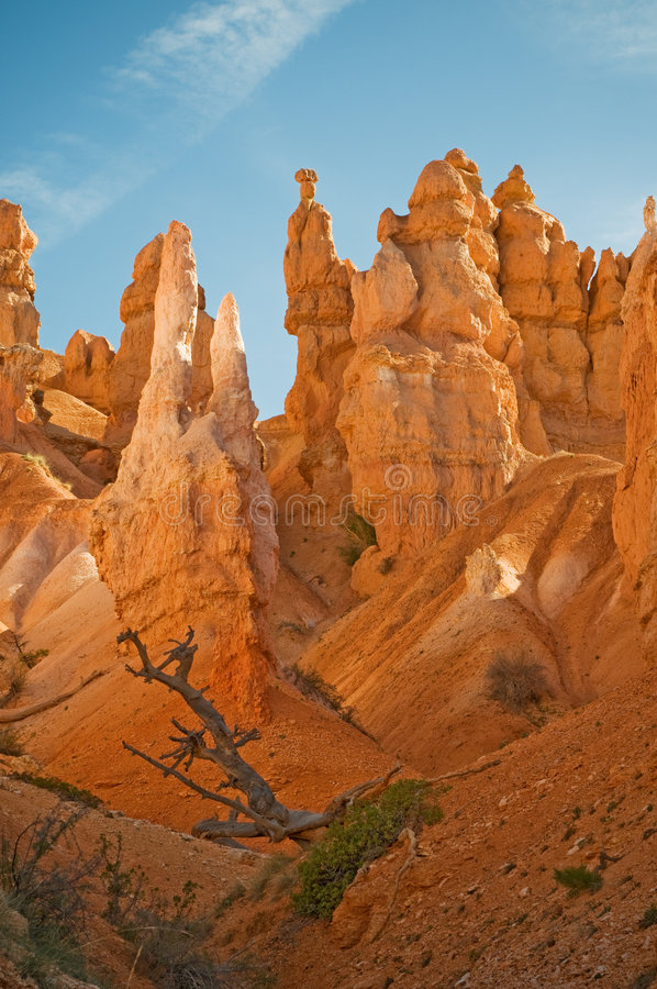 Rote Berggipfel (Hoodoos) der Bryce Schlucht lizenzfreie stockfotos