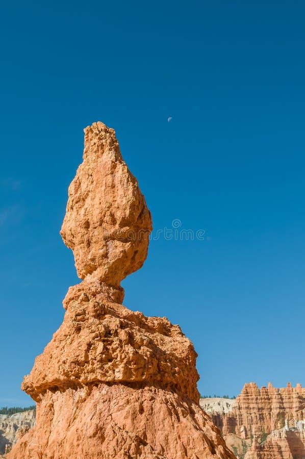 Rote Berggipfel (Hoodoos) der Bryce Schlucht, Utah, USA stockbild