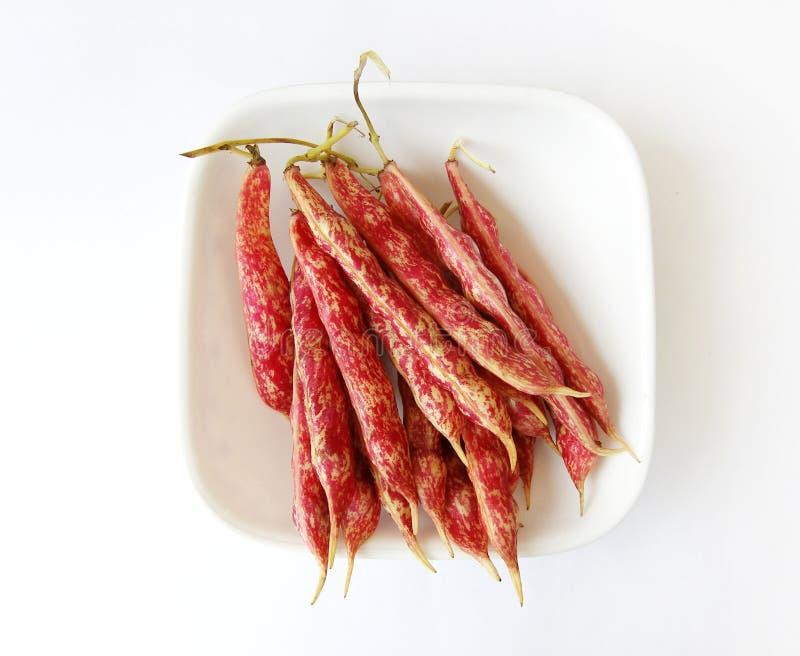 Rote beschmutzte Bohnen auf Weiß lizenzfreie stockfotografie