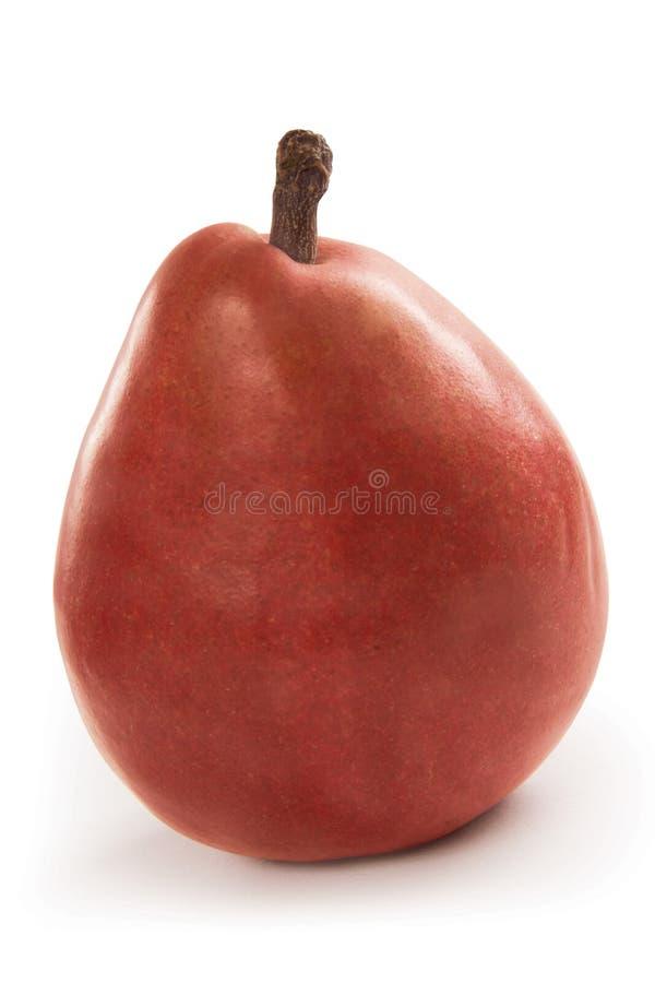 Rote Birne stockfotografie