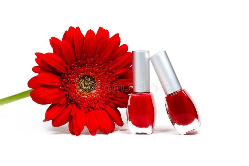 Rote Blume und Nagellacke stockfotografie