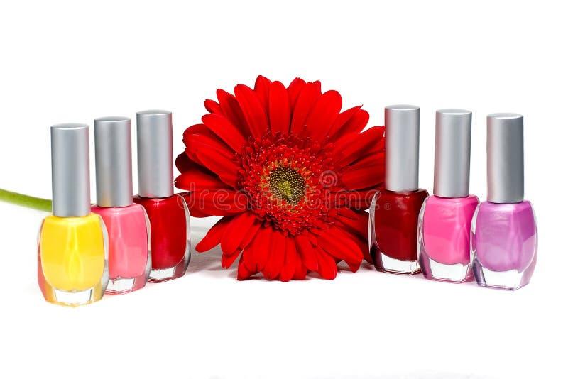 Rote Blume und Nagellacke lizenzfreies stockbild