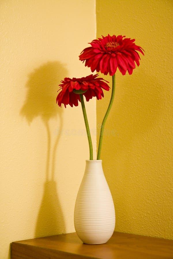 Rote Blumen und gelbe Wand stockfotos