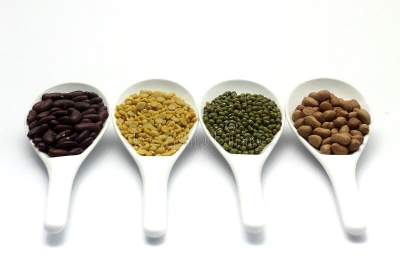Rote Bohne, Mungobohnen, Erdnuss, Soyabohne lizenzfreie stockfotos