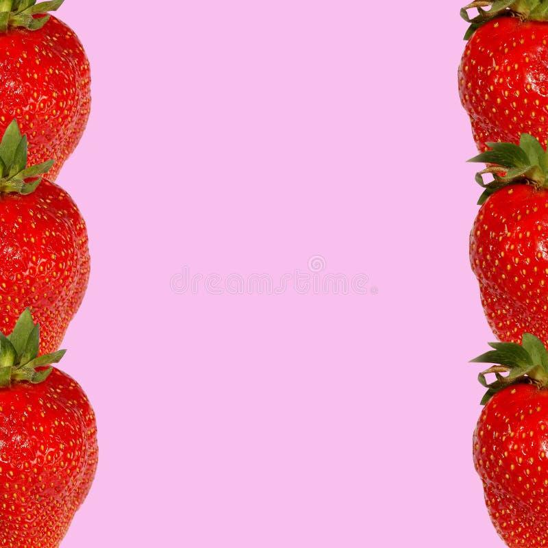 Rote Erdbeere auf einem rosa Hintergrund in Form eines Rahmens stockbild