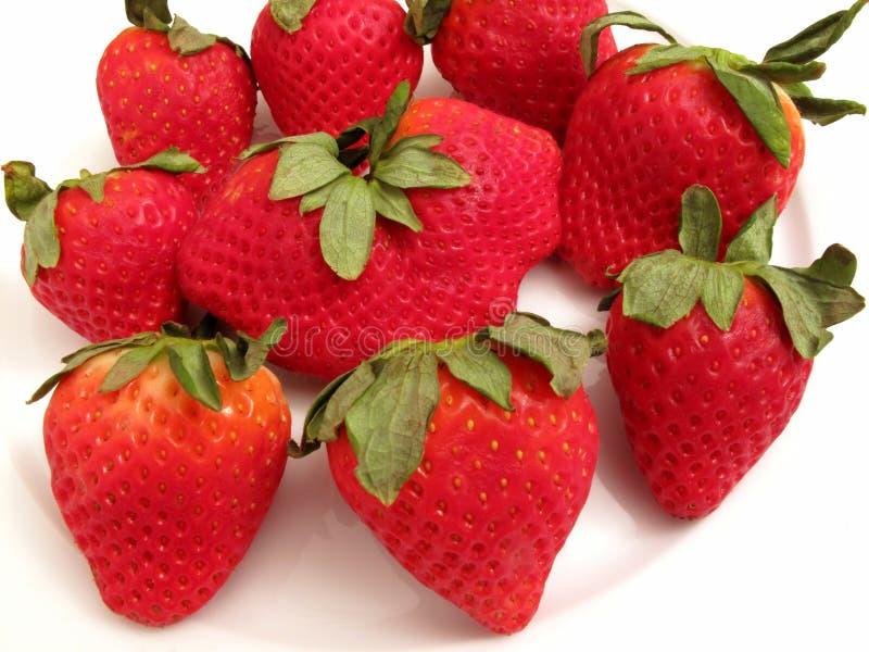 Rote Erdbeere-Gruppe stockbild