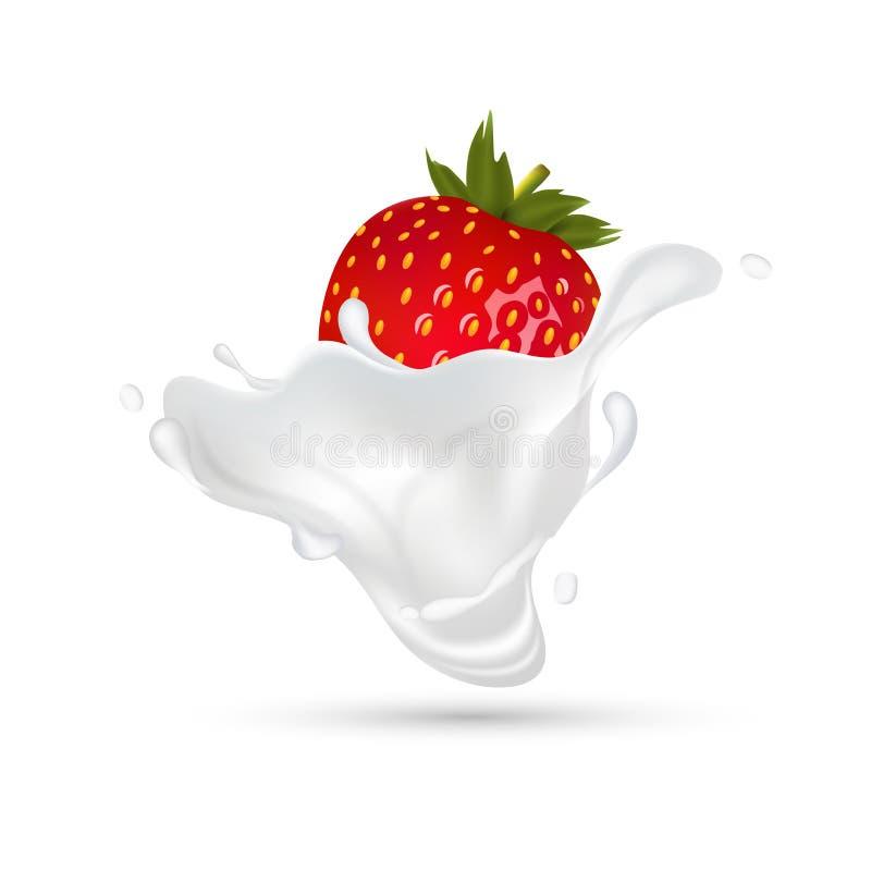Rote Erdbeere im Milchspritzen Gesundes flüssiges Lebensmittel Frische Erdbeerfrucht und -milch vektor abbildung