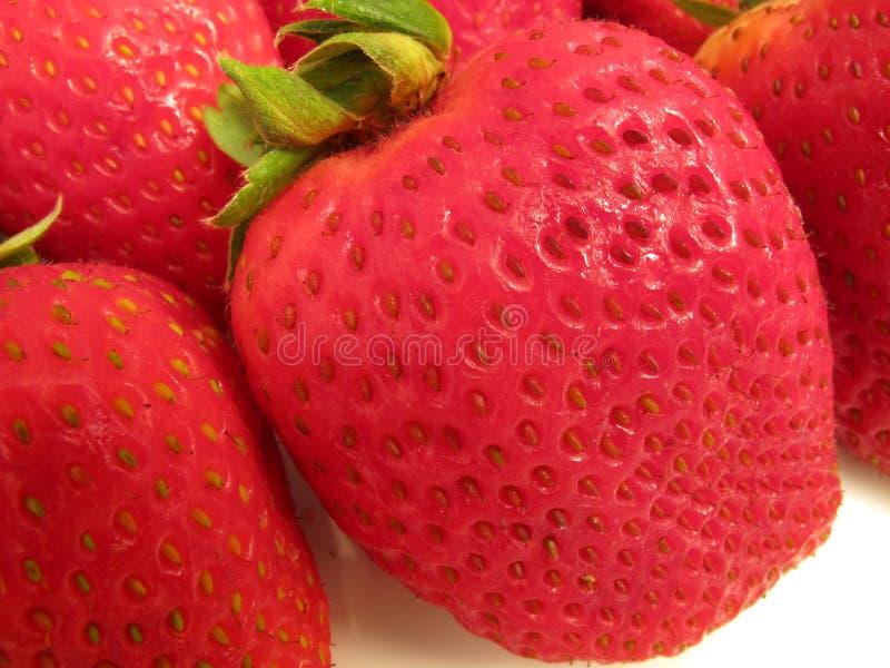 Rote Erdbeere-Nahaufnahme stockfotos