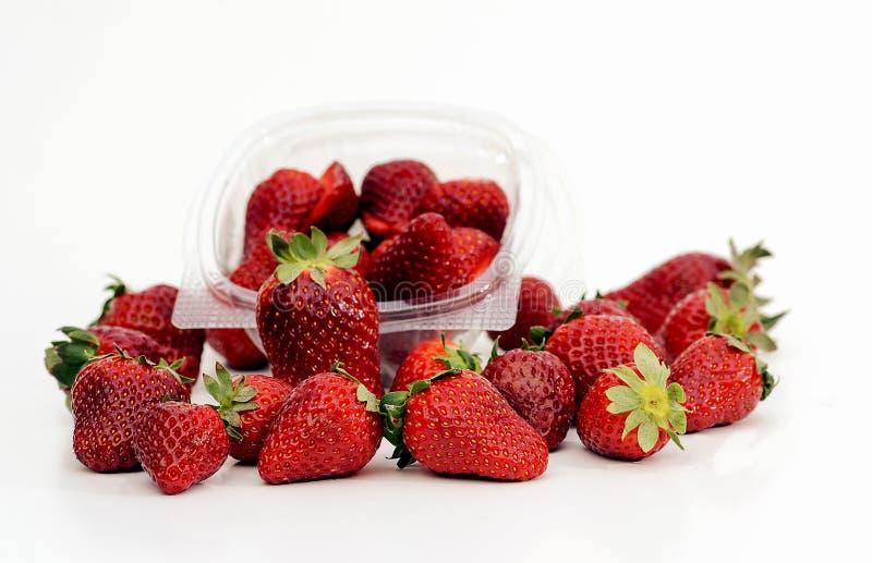 Rote Erdbeeren stockbild