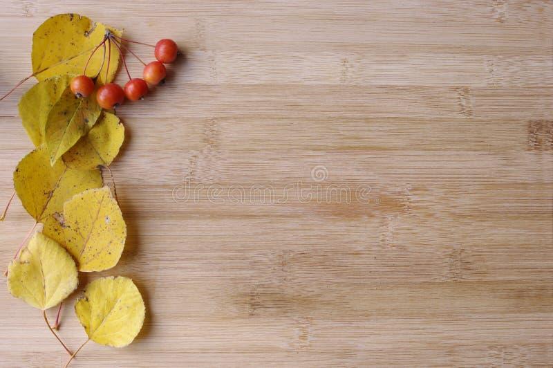 Rote Fall Beeren und Blätter stockbild