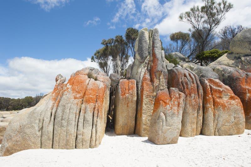 Rote Felsen an der Bucht des Feuers setzen Tasmanien auf den Strand lizenzfreie stockfotos