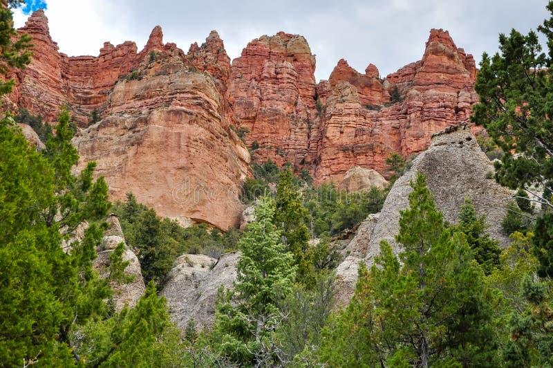 Rote Felsenklippen in Dixie National Forest stockbild
