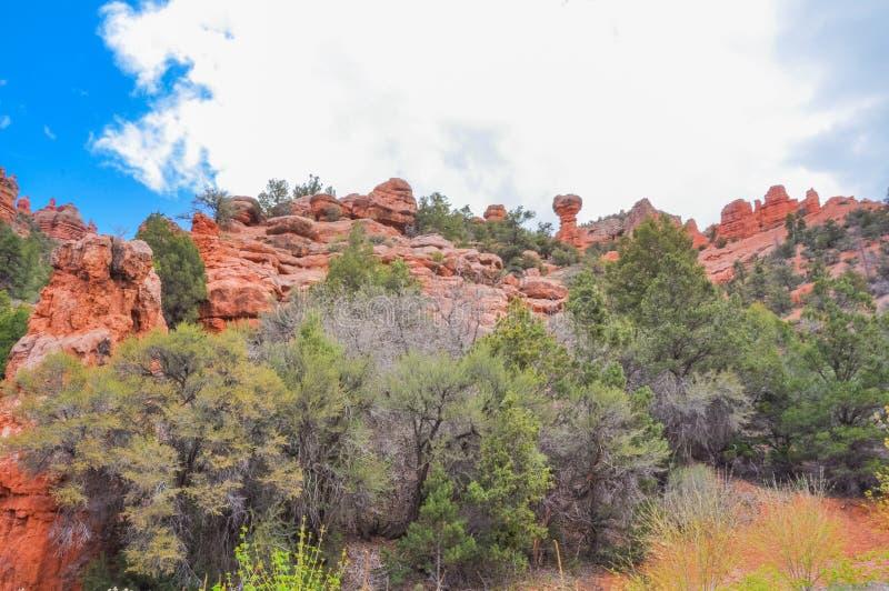 Rote Felsenklippen in Dixie National Forest stockfotografie