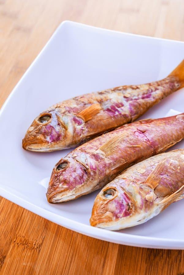 Rote Fische lizenzfreies stockfoto