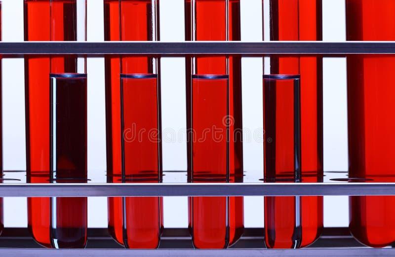 Rote Flüssigkeit in der Gruppe von sechs Glasrohr-Laborversuchwerkzeugen auf Stainles lizenzfreies stockbild