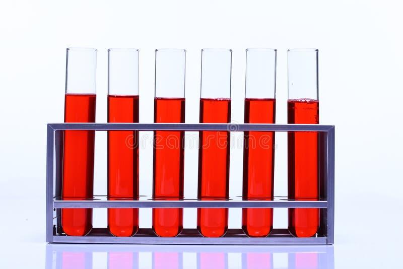 Rote Flüssigkeit in der Gruppe von sechs Glasrohr-Laborversuchwerkzeugen auf Stainles stockfotos