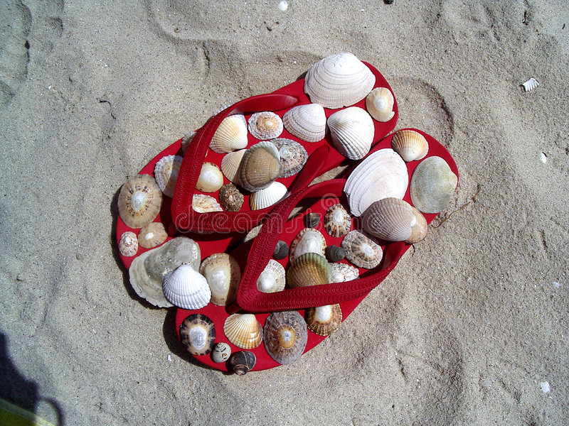 Rote Flipflops mit Shells lizenzfreies stockbild